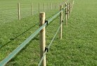 Argenton Electric fencing 4